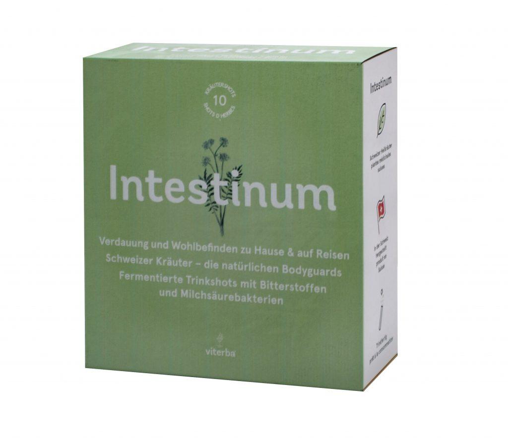 intestinum